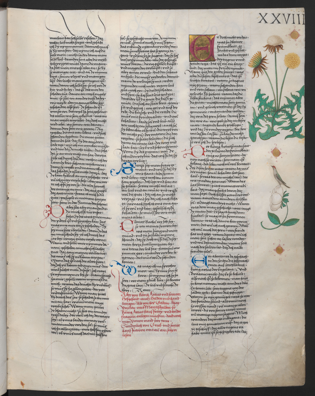 Ambraser Heldenbuch 28r